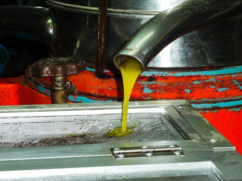 Pressed Into Oil