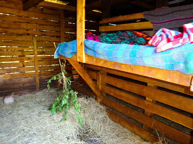Elephant's Quarters And Bunk For Minder